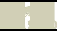Klenda Logo in Tan
